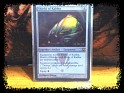 United States - Wizardz - Magic - No - Rara Foil - Shield of kaldra - 1